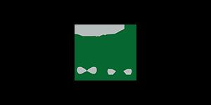 Icon Autonome Systeme